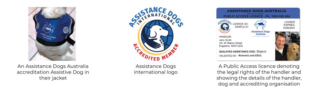 Assistance Dogs image